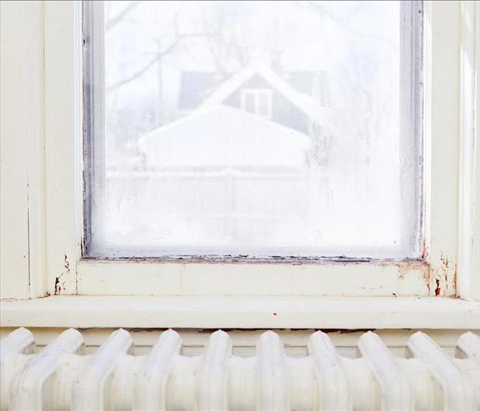 Mold Remediation Better Insulated, Energy Efficient -- And Moldy?