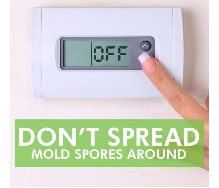 Commercial How To Stop Mold From Spreading